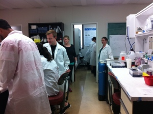 Michael Mackley leading the Shad Valley students in a DNA extraction along with Emily and Roxanne